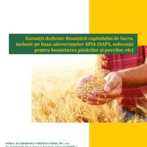 Garantii Capital de lucru_12_2019-page-001(1)